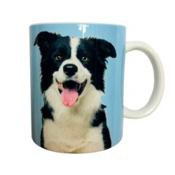 Kubek Border Collie KZ04